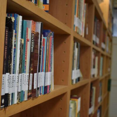 24 - Library Bookshelf